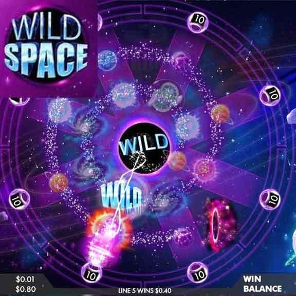 Wild Spce logo